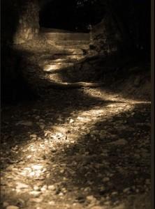illuminatedpathway