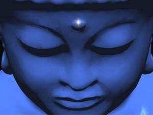 Buddha-Jayanti-135