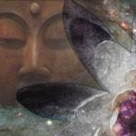 buddbrea