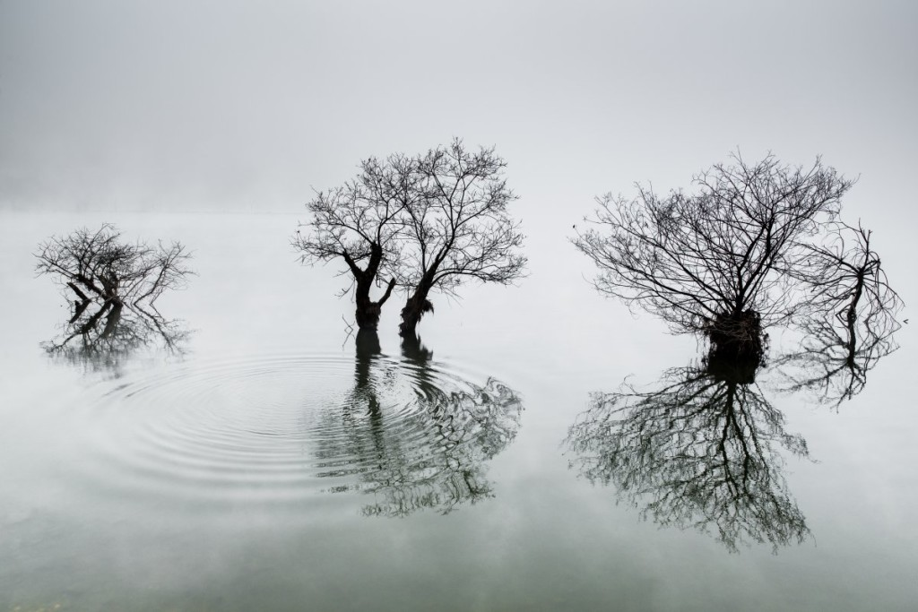 korea-ripples-in-the-calm-lake-by-dowon-choi